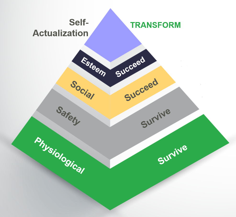 implication of maslows hierarchy of needs Maslow's hierarchy of needs in chapter 2 you saw that people become actualized to accomplish higher motives only after they have fulfi lled certain basic needs.